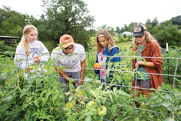 Spotlight on: Teaching and research farm
